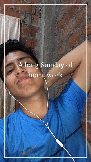 A long Sunday of homework