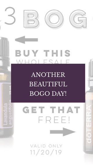 ANOTHER BEAUTIFUL BOGO DAY!