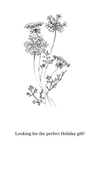 Looking for the perfect Holiday gift?