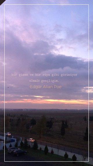 -Edgar Allan Poe bir gizem ve bir rüya gibi görünüyor olmalı gençligim.