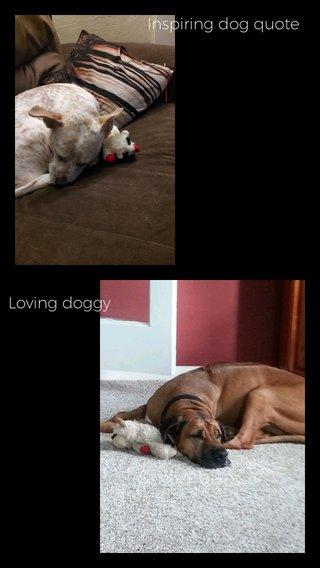 Inspiring dog quote Loving doggy