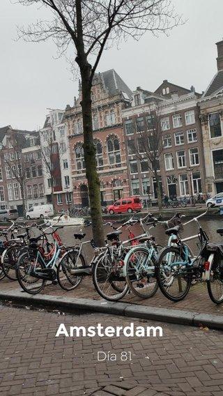 Amsterdam Día 81