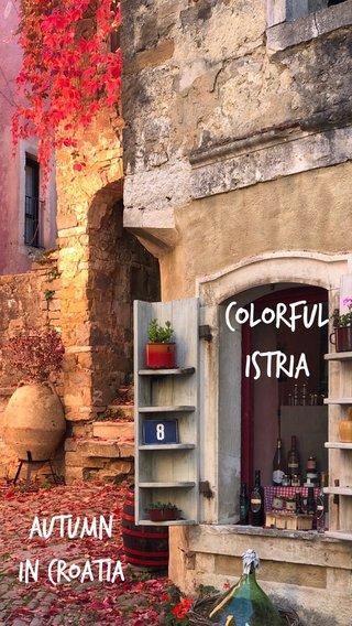 Colorful Istria Autumn in Croatia