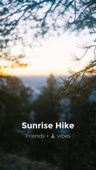 Sunrise Hike Friends + 🎄 vibes