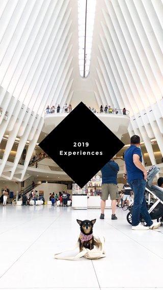 2019 Experiences
