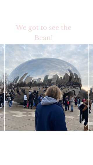 We got to see the Bean!