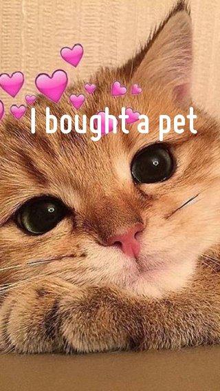 I bought a pet