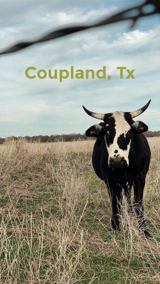 Coupland, Tx