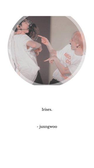 Irises. - juxngwoo