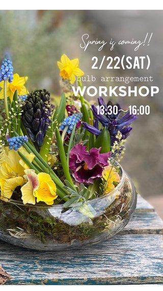 WORKSHOP 2/22(sat) 13:30~16:00 Spring is coming!! bulb arrangement