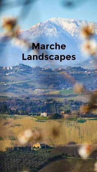 Marche Landscapes