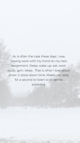 As is often the case these days, I was leaving work with my mind on my next assignment. Sleep, wake up, eat, work, study, gym, sleep... That is what I love about snow. It slows down time. Makes you stop for a second to listen to its gentle pattering.