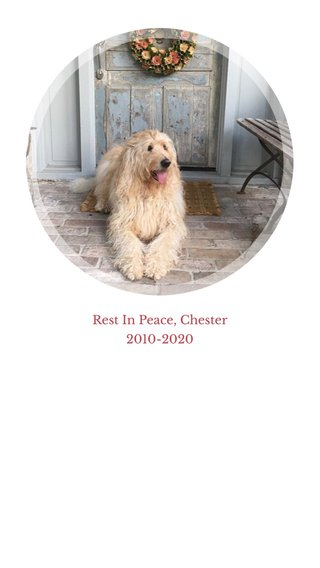Rest In Peace, Chester 2010-2020