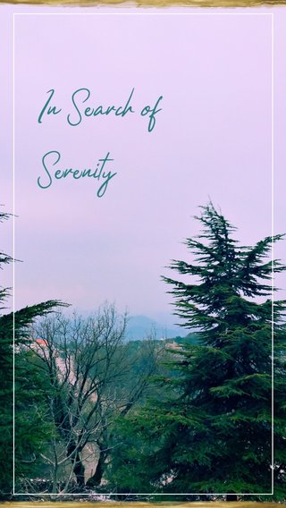 In Search of Serenity