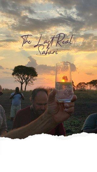 The Last Real Safari