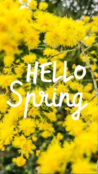 Spring Hello
