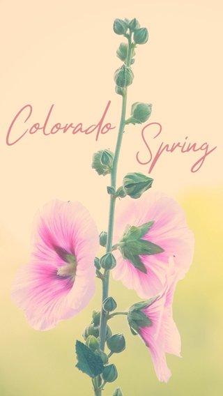 Spring Colorado
