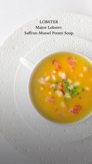 LOBSTER Maine Lobster; Saffron-Mussel Potato Soup