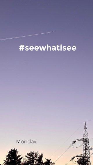 #seewhatisee Monday