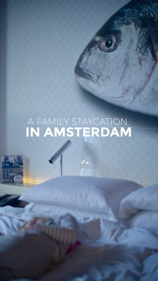 IN AMSTERDAM A FAMILY STAYCATION