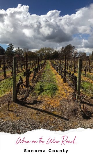 When on the Wine Road... Sonoma County