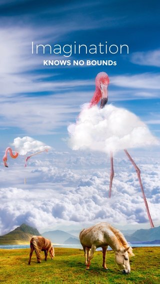 Imagination KNOWS NO BOUNDs