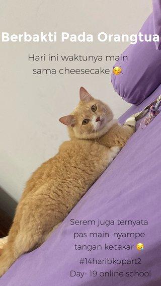 Berbakti Pada Orangtua Hari ini waktunya main sama cheesecake 🥳. #14haribkopart2 Day- 19 online school Serem juga ternyata pas main, nyampe tangan kecakar 😪