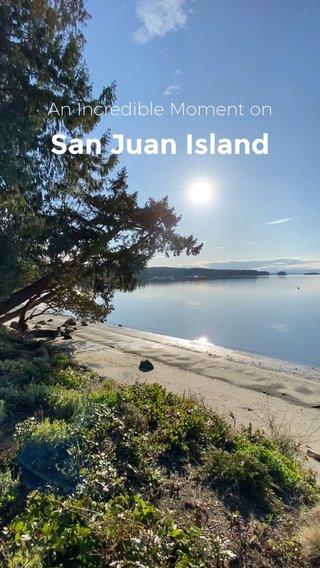 San Juan Island An Incredible Moment on