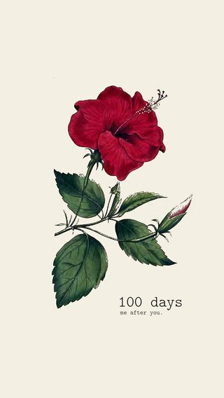 100 days me after you.
