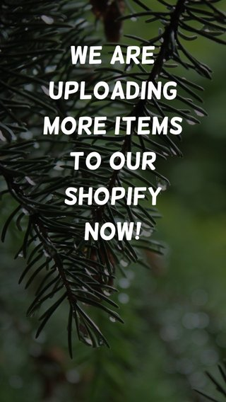 We are uploading more items to our Shopify Now!