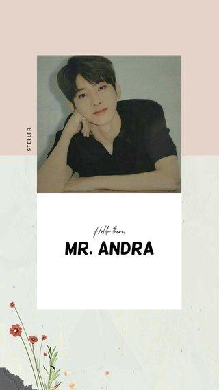 Mr. Andra Hello there,