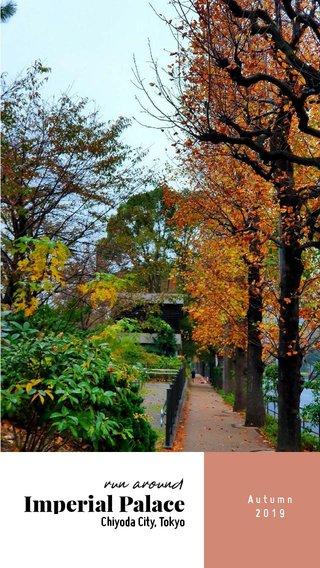 Imperial Palace run around Chiyoda City, Tokyo Autumn 2019