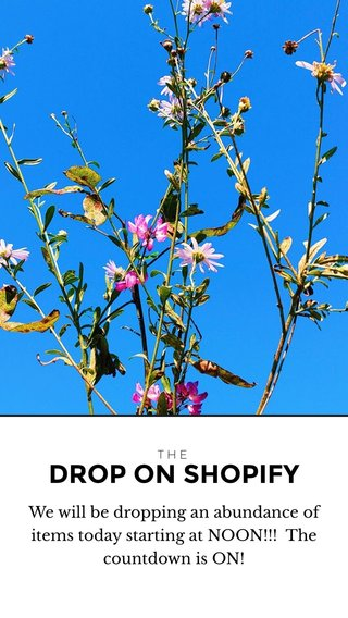 DROP ON SHOPIFY We will be dropping an abundance of items today starting at NOON!!! The countdown is ON! THE