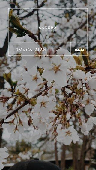 04.22 SAKURA TOKYO, JAPAN