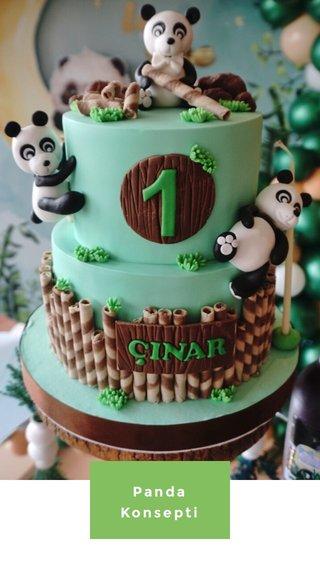 Panda Konsepti