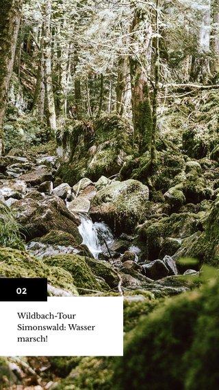 02 Wildbach-Tour Simonswald: Wasser marsch!