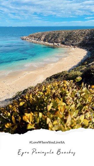 Eyre Peninsula Beaches #LoveWhereYouLiveSA
