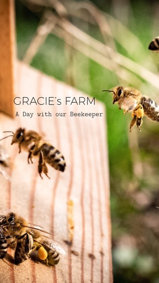 GRACIE's FARM A Day with our Beekeeper