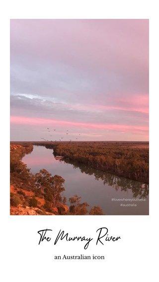 The Murray River an Australian icon #lovewhereyoulivesa #australia