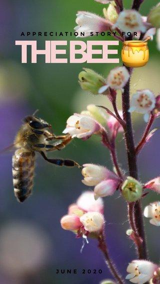 THE BEE 🍯 APPRECIATION STORY FOR JUNE 2020 #stellergermany #wildlife #bee #nature #outdoors #animal #photography #wildlifephotography #livestock #bumblebee #naturewalk #garden #gardenactivity #outdoor #adventure #stellerid #steller #stellerstories #storyoftheday #story #love #lovestory