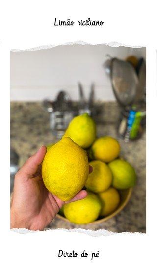 Direto do pé Limão siciliano