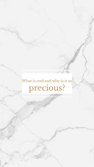 precious? What is oud and why is it so