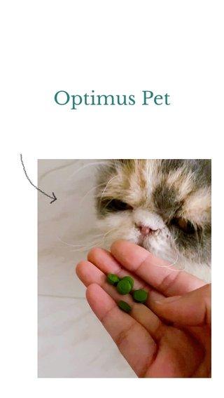 Optimus Pet