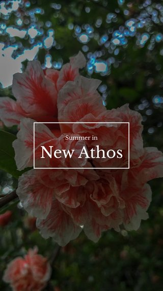 New Athos Summer in
