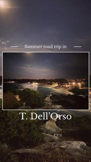 T. Dell'Orso Summer road trip in