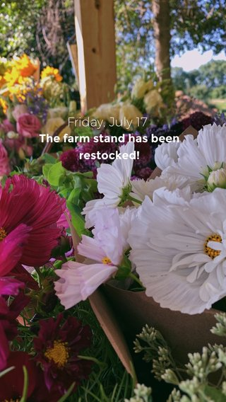 Friday, July 17 The farm stand has been restocked!