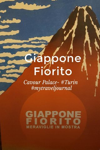 Giappone Fiorito Cavour Palace- #Turin #mytraveljournal