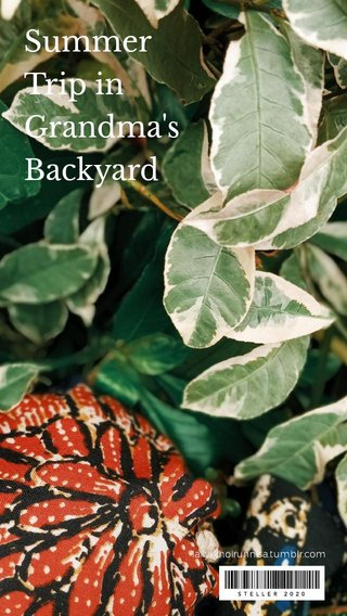 Summer Trip in Grandma's Backyard laily-khoirunnisa.tumblr.com