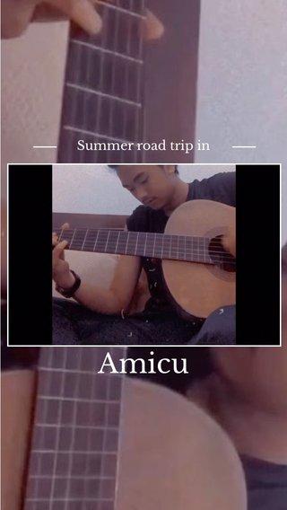 Amicu Summer road trip in