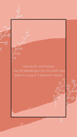 looking for roommates I live off Weddington by the IAMS dog park in a cute lil 3 bedroom house